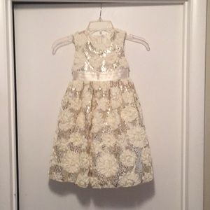 Beautiful Girls Dress 5T